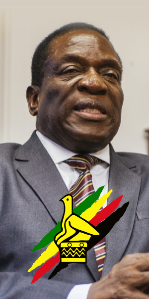 Nelson Chamisa - Zimbabwe 2018 Elections.