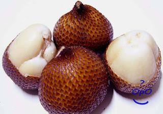 Opo - Manfaat buah salak bagi kesehatan