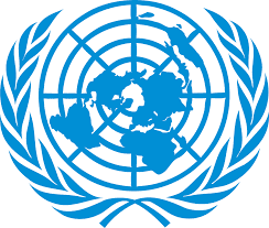Driver Job at United Nations Tanzania - Arusha