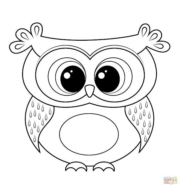 Cute Owl Coloring Pages Unique With Best Of Cute Owl Exterior