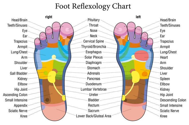 food reflexology, hand reflexology