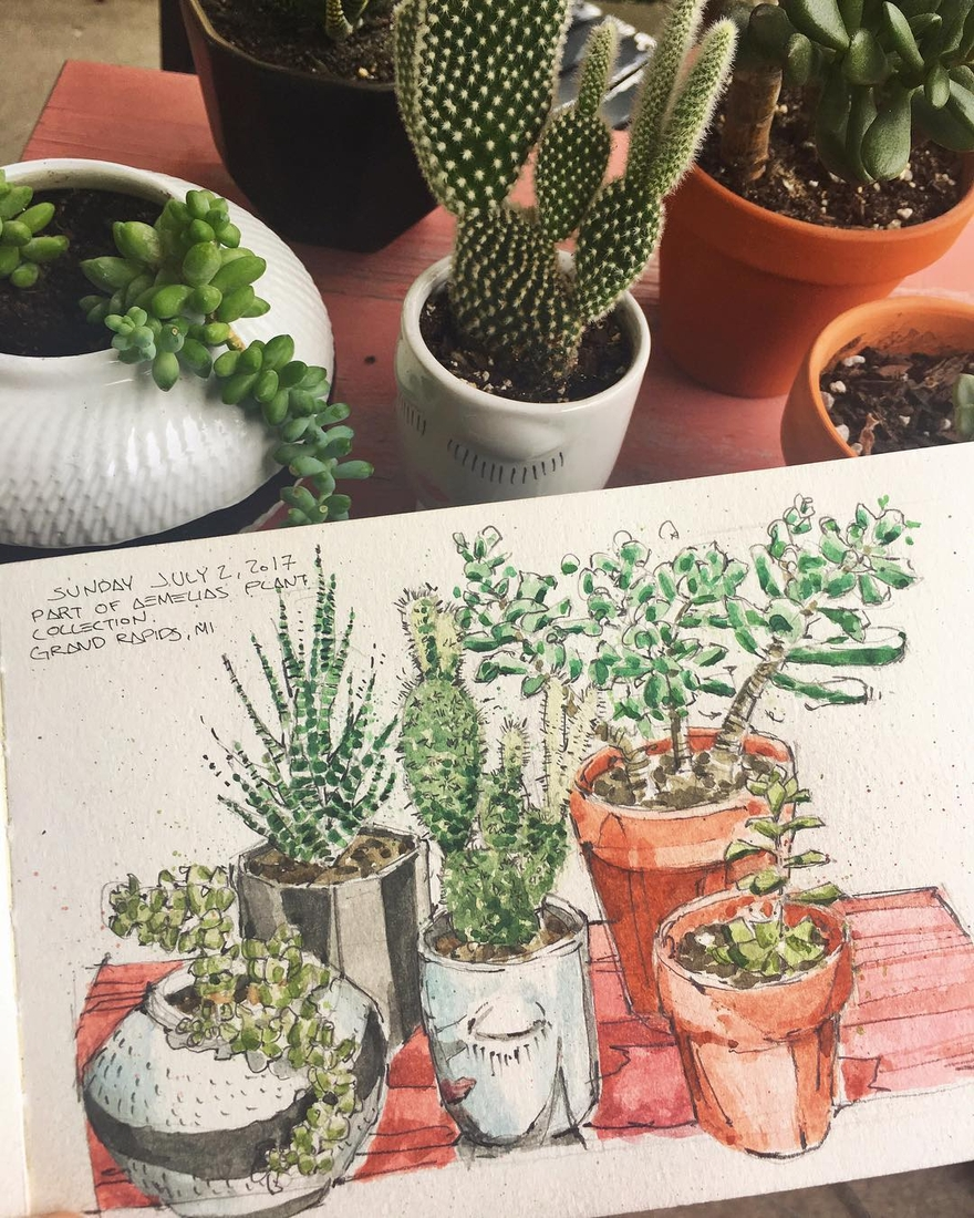 09-Practising-my-Botanical-Sketching-Josiah-Hanchett-Urban-Sketcher-taking-in-the-views-and-Drawing-them-www-designstack-co