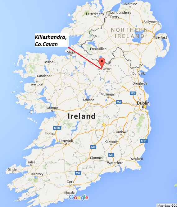 Map Of Ireland Cavan.Life On The Wing They Are A Wild Bunch In Cavan