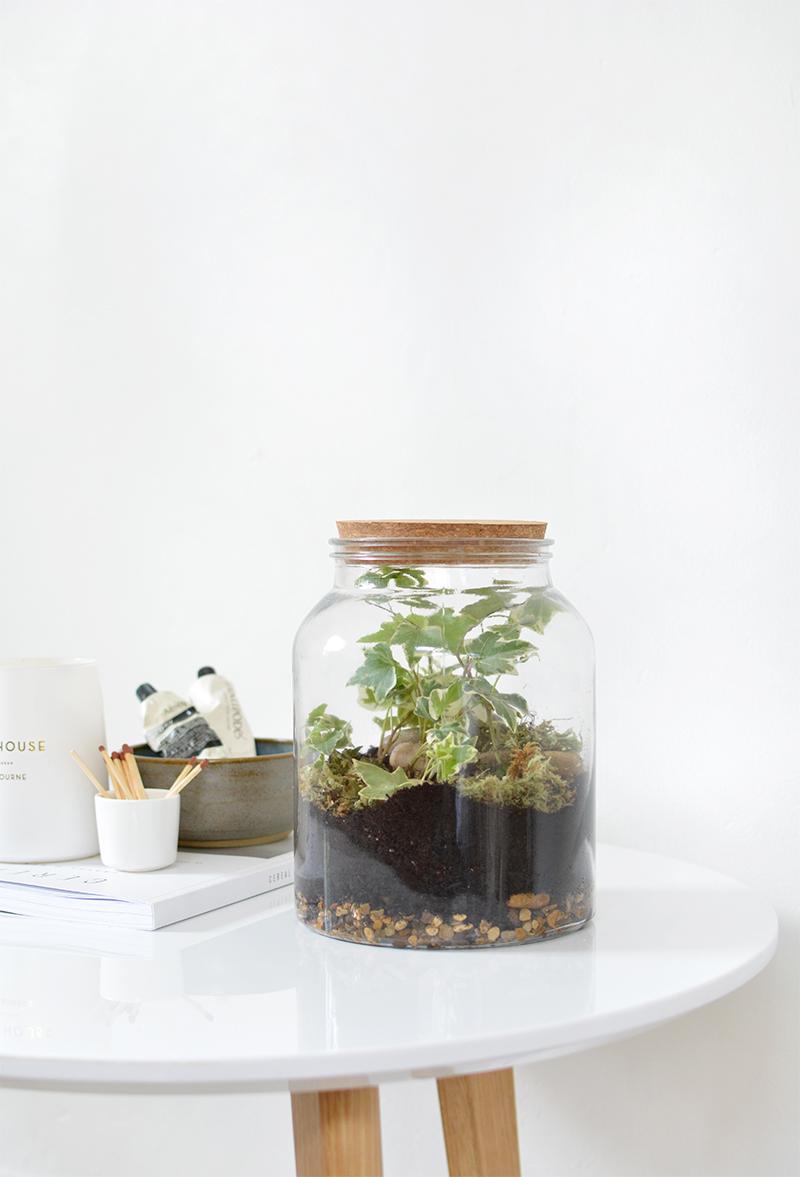 Diy Terrarium In A Jar Burkatron