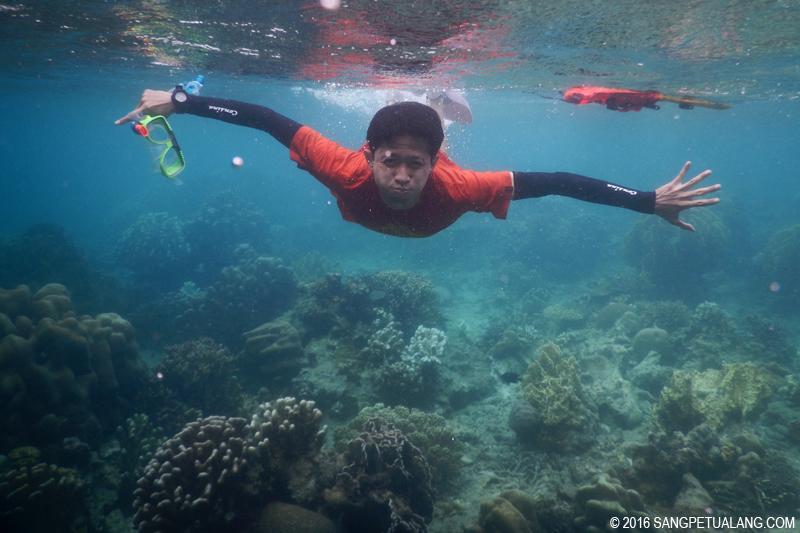Snorkeling di Pulau Harapan
