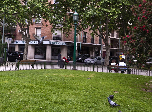 Plaza,gente y palomas