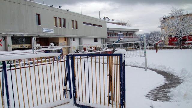 Οι εκπαιδευτικοί της Αλεξανδρούπολης για την απόφαση του Δημάρχου για τη διακοπή των μαθημάτων στα σχολεία