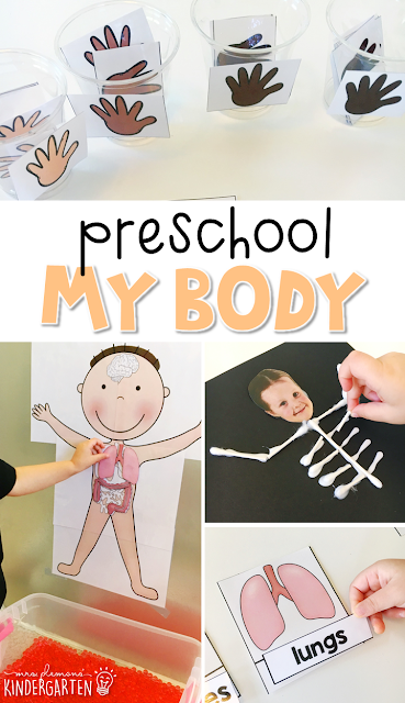 Tons of human body themed activities and ideas. Weekly plan includes books, literacy, math, science, art, sensory bins, and more! Perfect for tot school, preschool, or kindergarten.