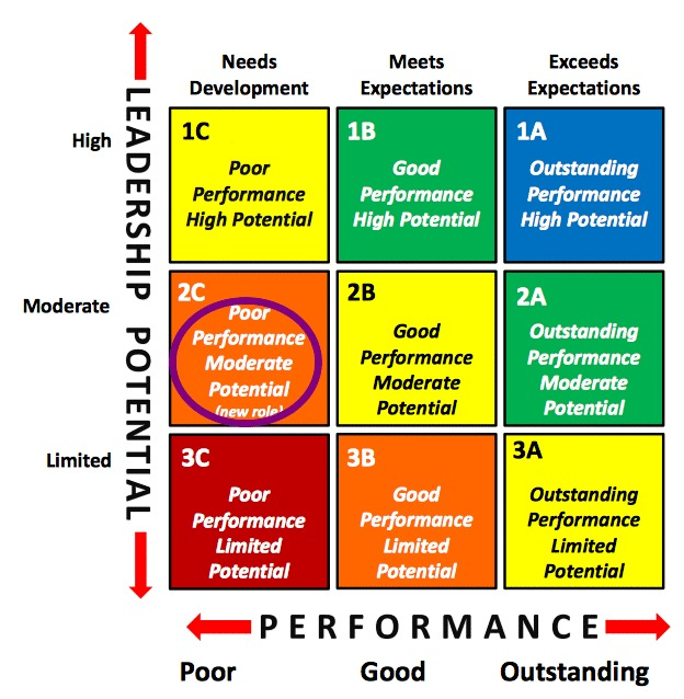 Talent Management 9 Box Grid Poor Performance Moderate Potential
