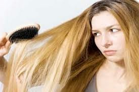 Inilah tips atau cara merawat rambut kering Tips Cara Merawat Rambut Kering