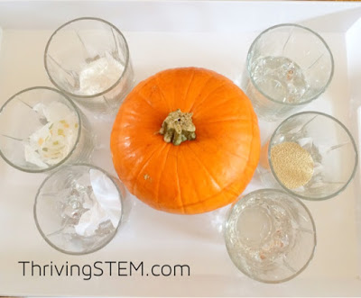 Engage your students in learning about science, math and engineering with these fun ideas this fall!