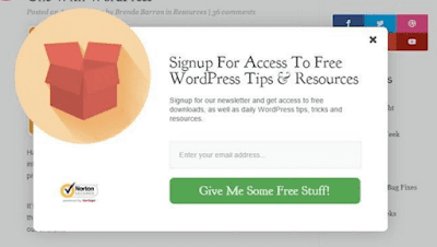 Example of squeeze page for solo ads