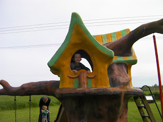 house on stilts playground