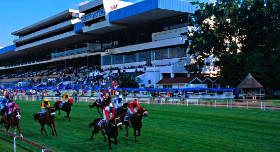 Image of Turffontein Race Course and Link To Hollywoodbets' Best Bets for Turffontein's Racing on Saturday 27 August