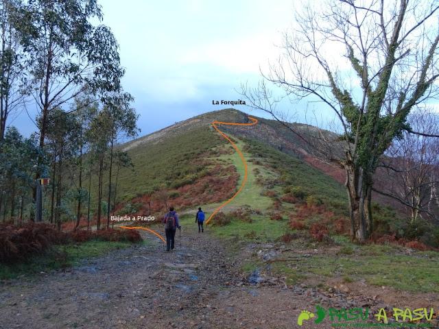 Ruta al Pico Gobia y La Forquita: Collado la Forquita