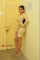 Actress Pooja Roshan Stills in Golden Short Dress at Box Movie Audio Launch  0017.JPG