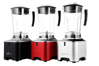 Froothie Optimum G2.1 Platinum Series blender review