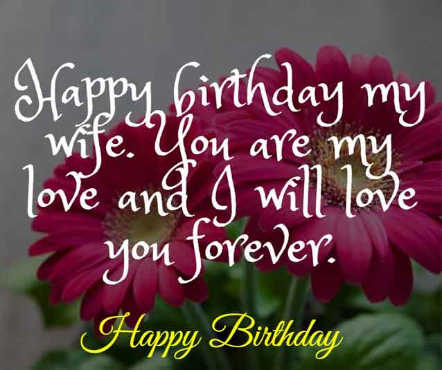 Happy birthday my wife. You are my love and I will love you forever.