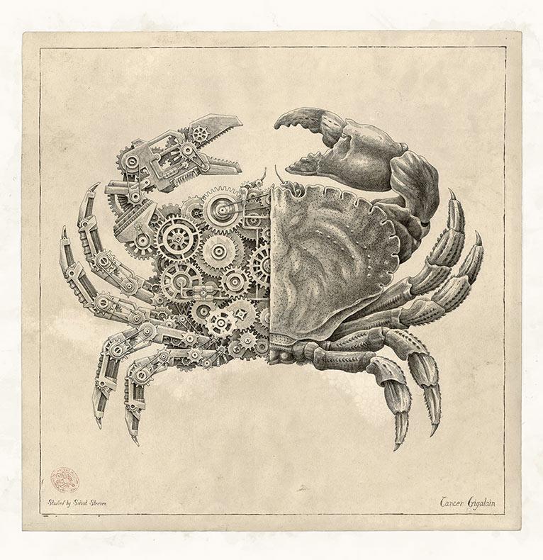 Crustáceos mecánicos con inserciones mecánicas ilustradas por Steeven Salvat