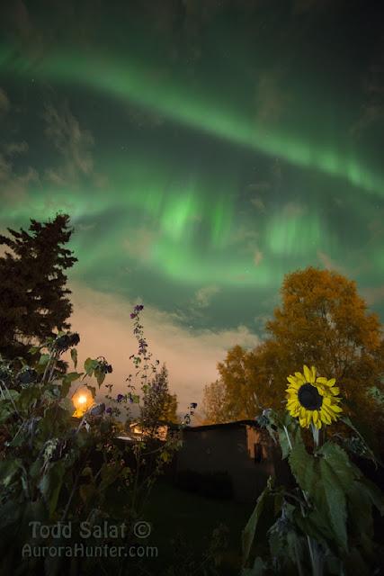 foto de aurora polar - aurora boreal