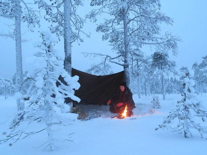Tarp vinter