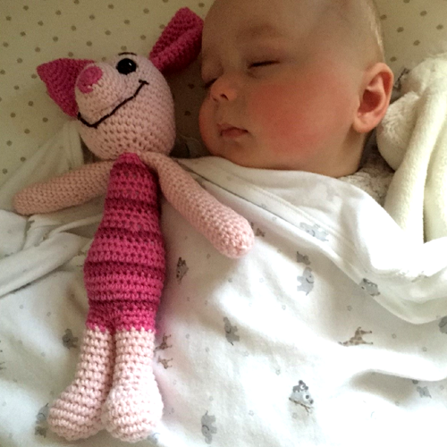 Piglet and Baby Piglet Toy - Free Pattern