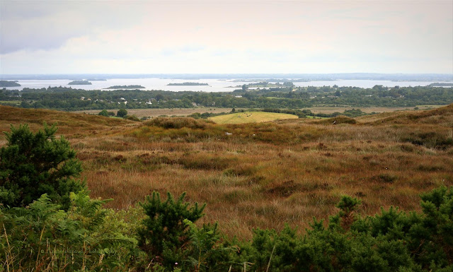 Irish landscape from Connemara