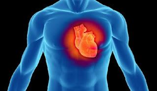 Έτσι χτυπάει η ανθρώπινη καρδιά!