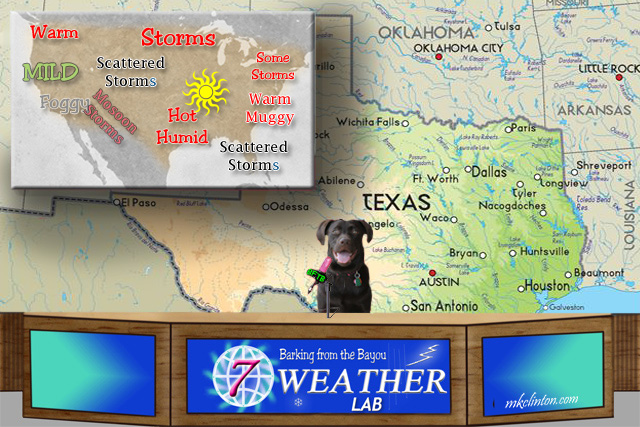 BFTB NETWoof Weather Forecast