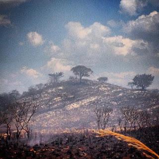 Incendio en Chiapas. Observando como las  llamas devoran la tierra me pregunto:  ¿Permitirán los seres humanos que los  demonios que manejan el mundo desde las sombras destruyan su hermoso planeta  convirtiéndolo en un infierno?