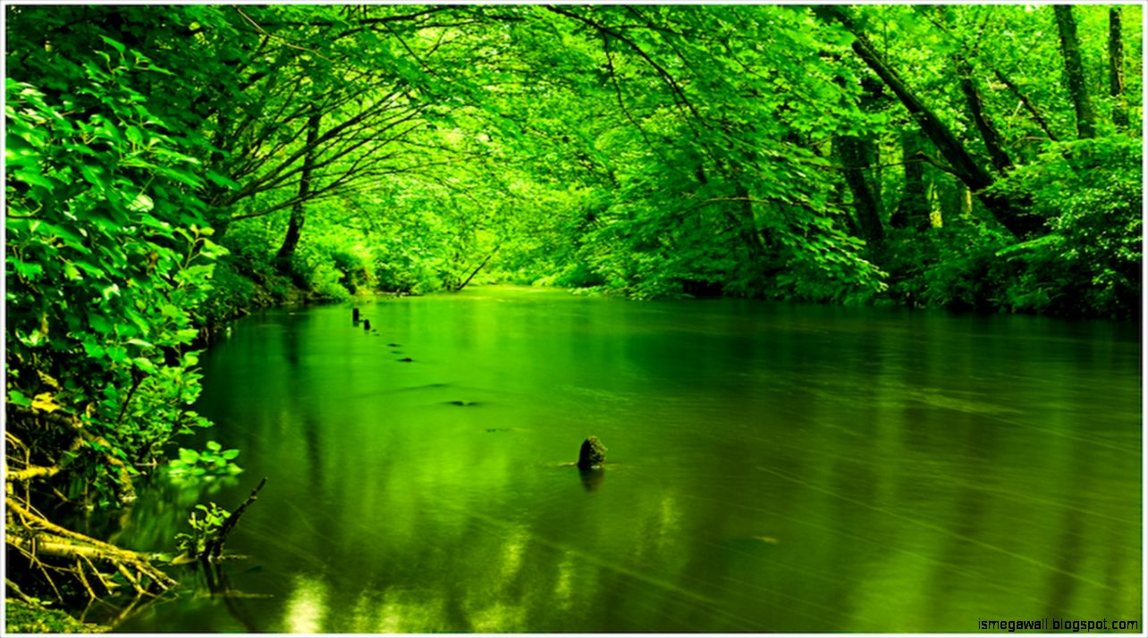 green nature background hd - photo #4