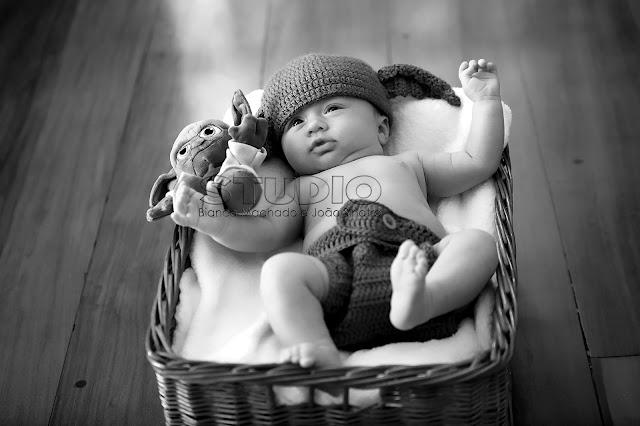 fotos criativas de bebes recém nascidos