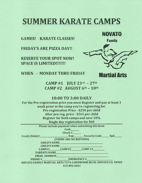 NFMA Summer Camps 2018 Flyer
