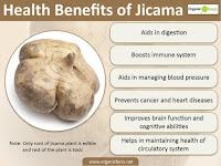 8 Surprising Benefits Of Jicama