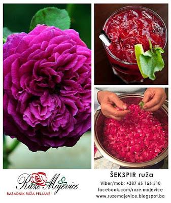 Koristi se za spravljanje soka od ruže, čaja, ružine vodice i slatko od ruža...