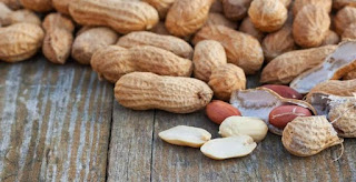 Bagaimana Caranya Memanfaatkan Kulit Kacang