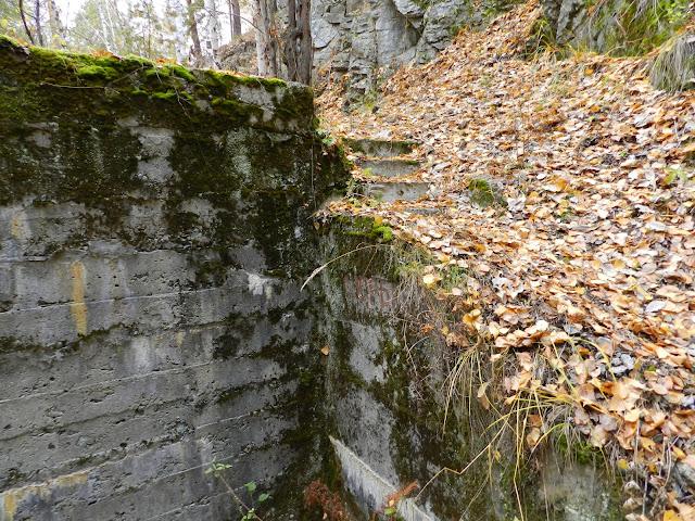 Лестница засыпанная листвой