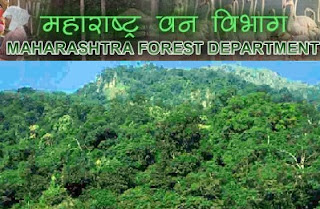 Maharashtra Forest Department Recruitment mahaforest.nic.in