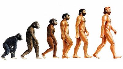 maymundan mı geliyoruz, ilk insan maymun muydu