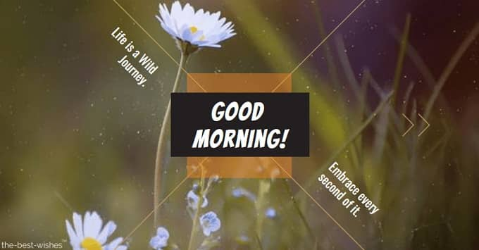 Best Good Morning Messages, Wishes and Inspirational Quotes