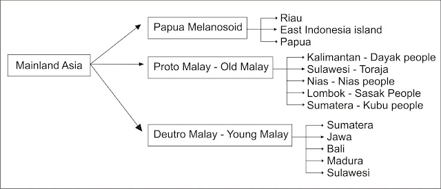 The diagram below shows pre-historic ethnic groups in Indonesia