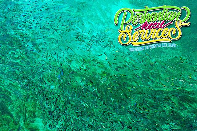 Pakej Pulau Perhentian Besar 2018 , Pakej Pulau Perhentian Kecil 2019