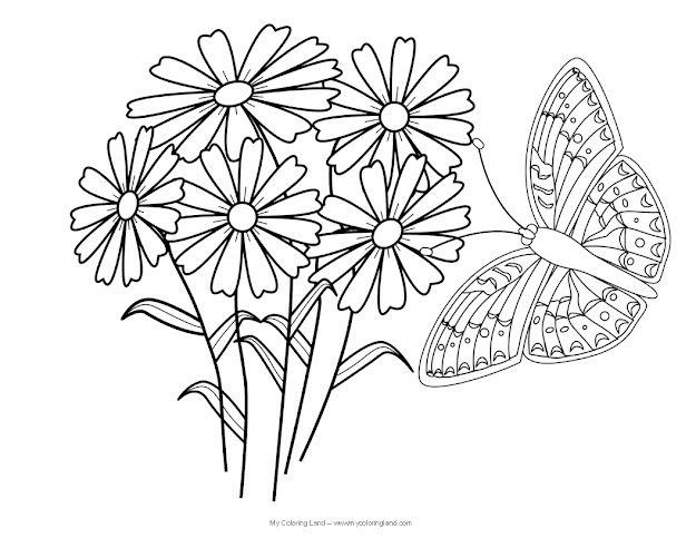 Butterfly And Flower Coloring Pages For Adults  Butterfly And Flower  Coloring Pages