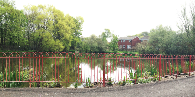 Southport Hospital Pond