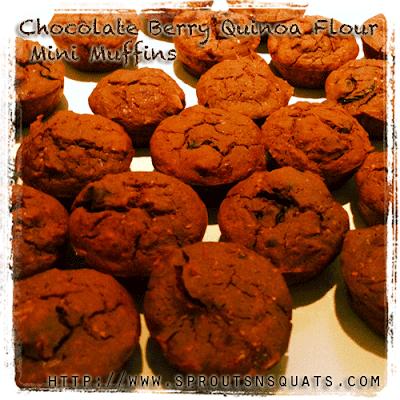 Chocolate Quinoa Flour Mini Muffins