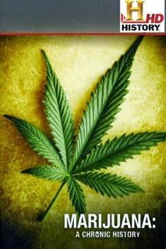 Historia de la Marihuana en Español Latino