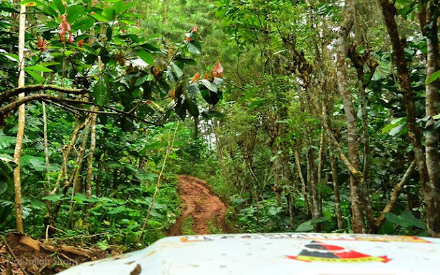 Trek offroad di Nglinggo, kombinasi tanah liat dan sungai kecil