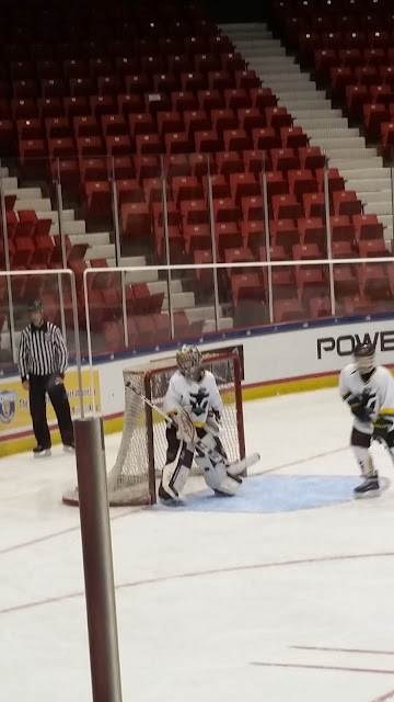 Eclectic Red Barn: Grandson as goalie