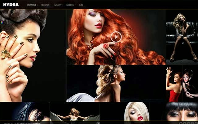 120 Awesome WordPress Photography Themes 2014