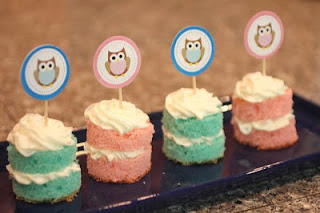 Owls Cupcake Wrappers in Blue and in Pink to Print Out for Free.